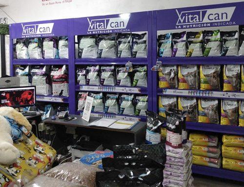 💬ENTREVISTA Daniel Juárez, Trade Marketing de Vitalcan. Canal especializado y canal masivo